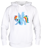Толстовка Rainbow Dash | My little pony