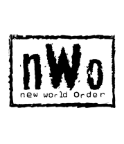 Кружка New world order