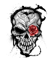 Чехол для iPhone Day of the Dead