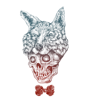 Чехол для iPhone Fox skull